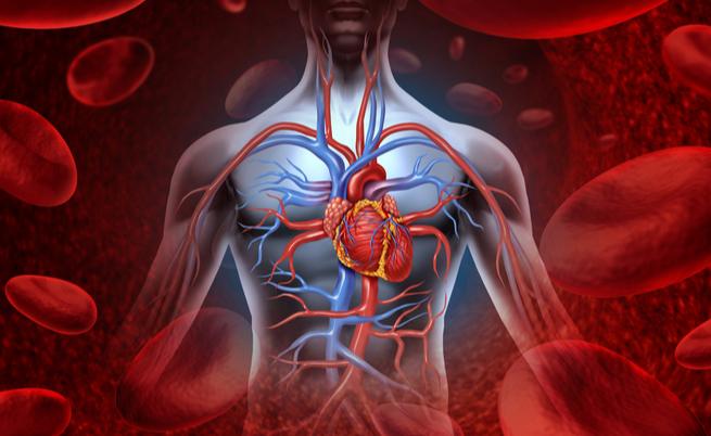 Cuore polmonare: sintomi, cause e rimedi