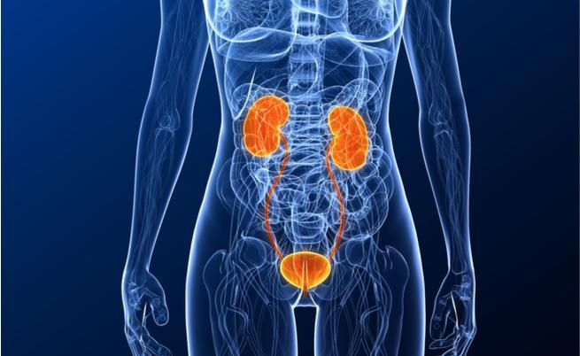 ritenzione urinaria: sintomi, cause e cure