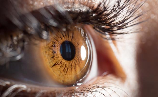 occhi: quali malattie possono svelare?