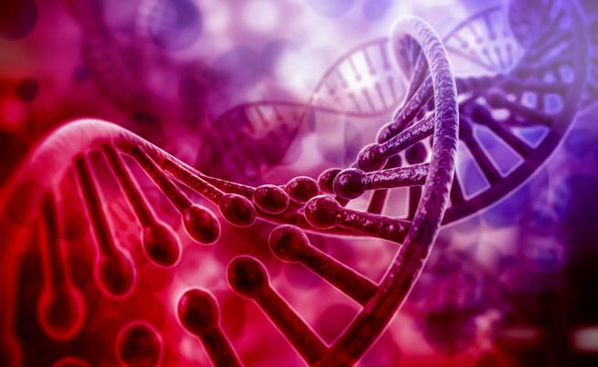 pophuman: enciclopedia genetica digitale