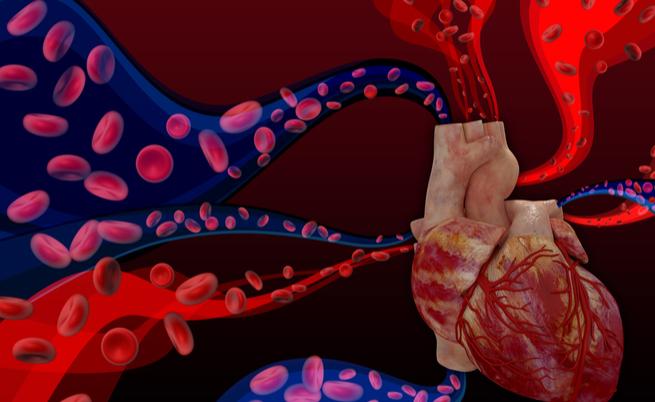 cardiopatie congenite: cause, sintomi e cure nella giornata mondiale della cardiopatie congenite