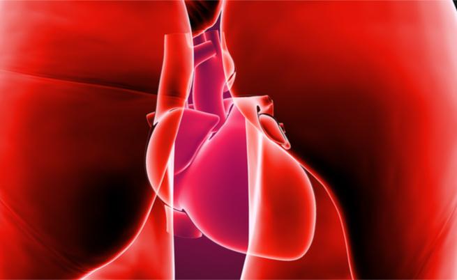Lo stress nelle donne aumenta il rischio cardiaco e i problemi di circolazione