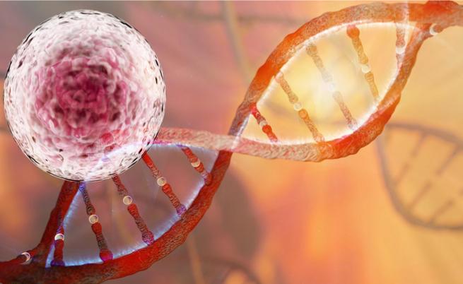Quali sono i tumori ereditari