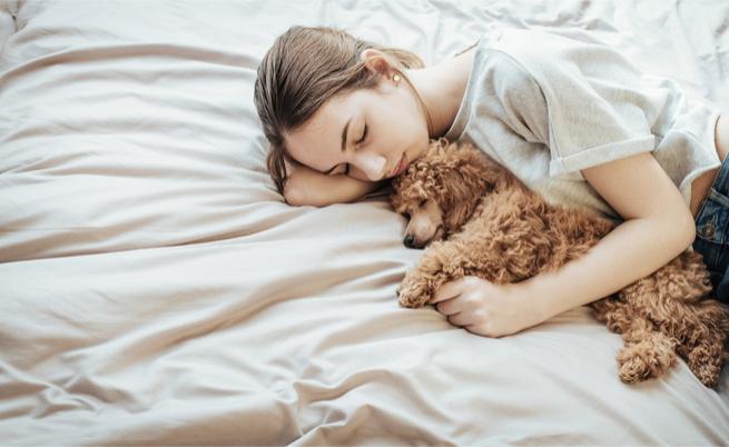 dormire con il cane fa male oppure no