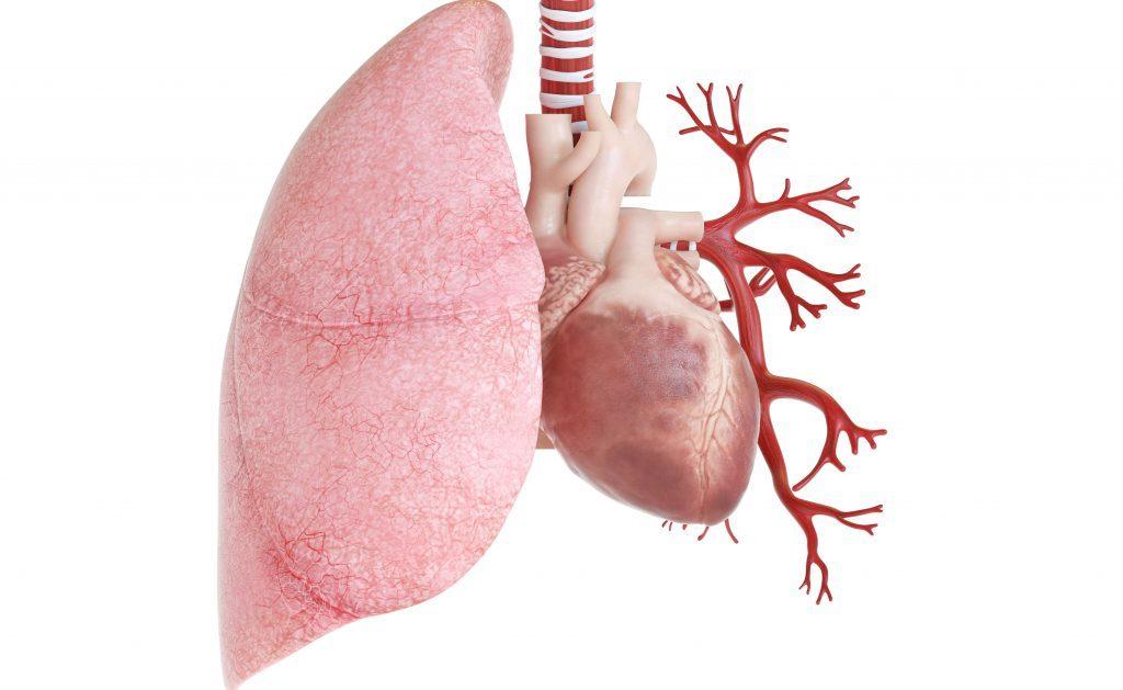patologie cardiache: la storia di un piccolo eroe