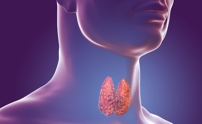 Tiroide e sale: ecco qual è il legame