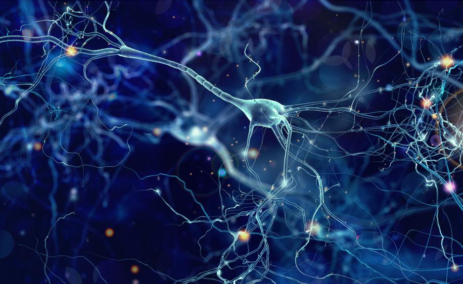 autismo: i sintomi da valutare per una diagnosi precoce