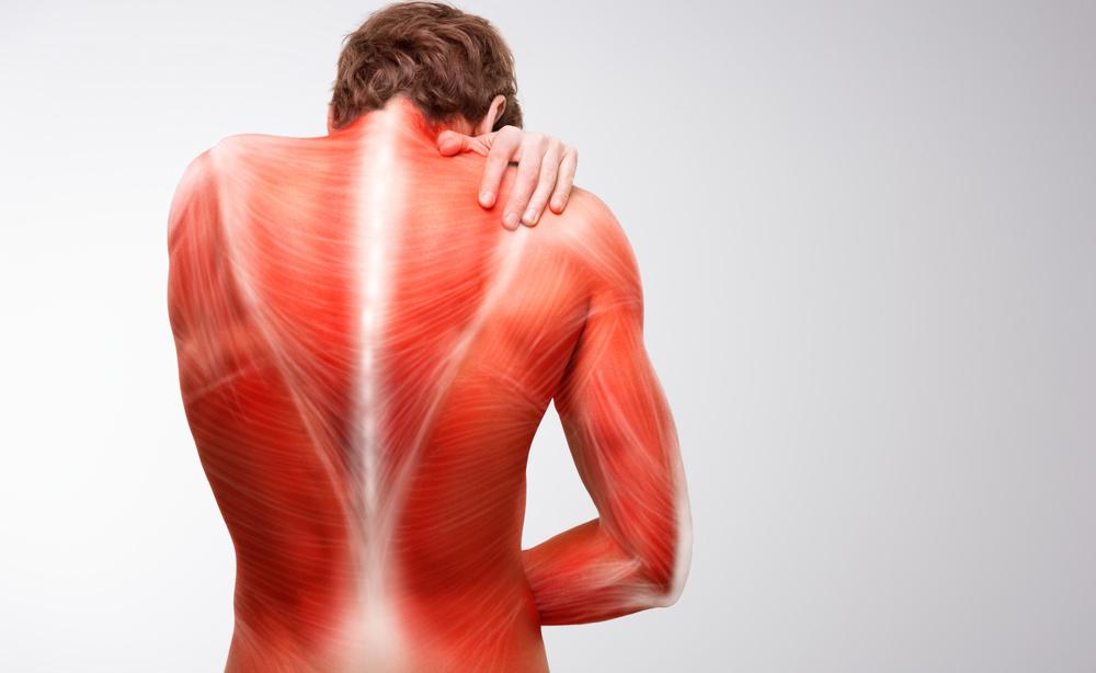 dolori muscolari: combatterli con il magnesio