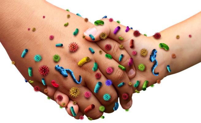 Mani: ecco i batteri che vivono sulle nostre mani e come lavarle correttamente