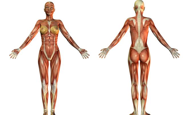 atrofia muscolare: sintomi, cause e rimedi