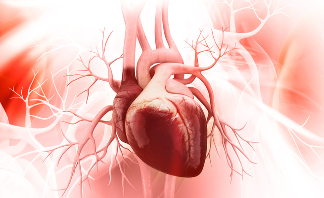 Sintomi dell'insufficienza cardiaca: tosse, gambe gonfie e sbalzi di umore