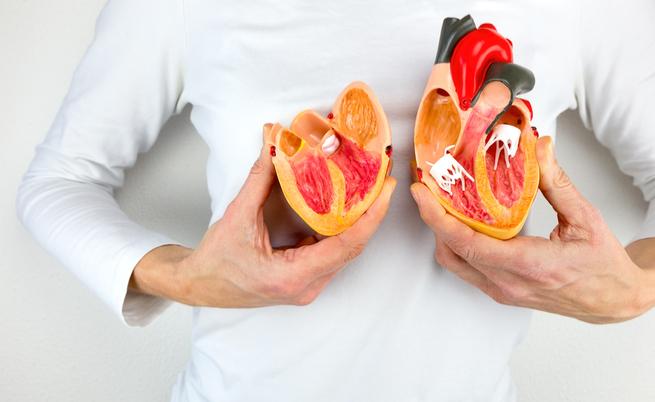 Nuove cure per le patologie del cuore