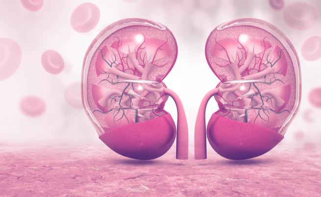 Fosforo e malattie renali