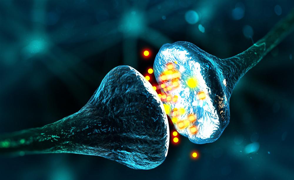 sinapsi artificiale ricreata in laboratorio