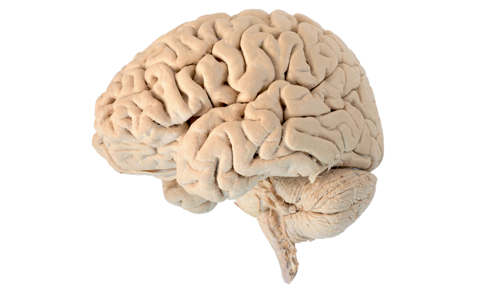 sindrome di Tourette: sintomi cause e terapie