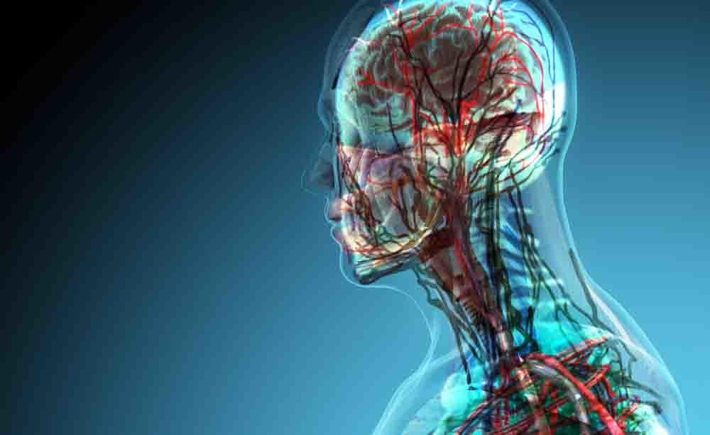 malattie autoimmuni: il rischio di alzheimer