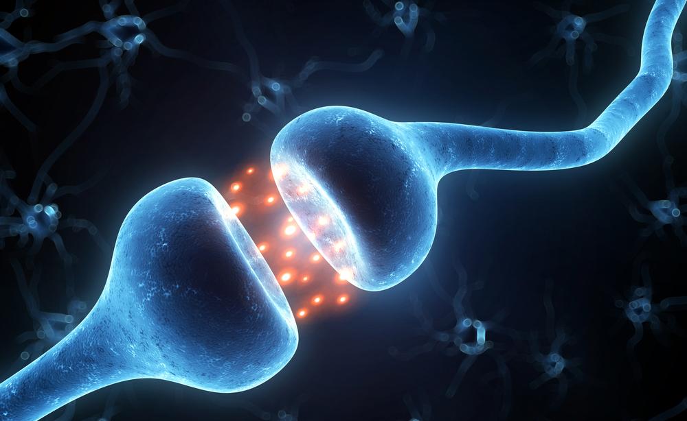sistema nervoso: i sintomi dei danni ai nervi