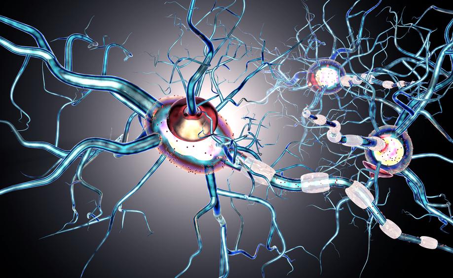 sclerosi multipla: trattarla con il trapianto di cellule staminali