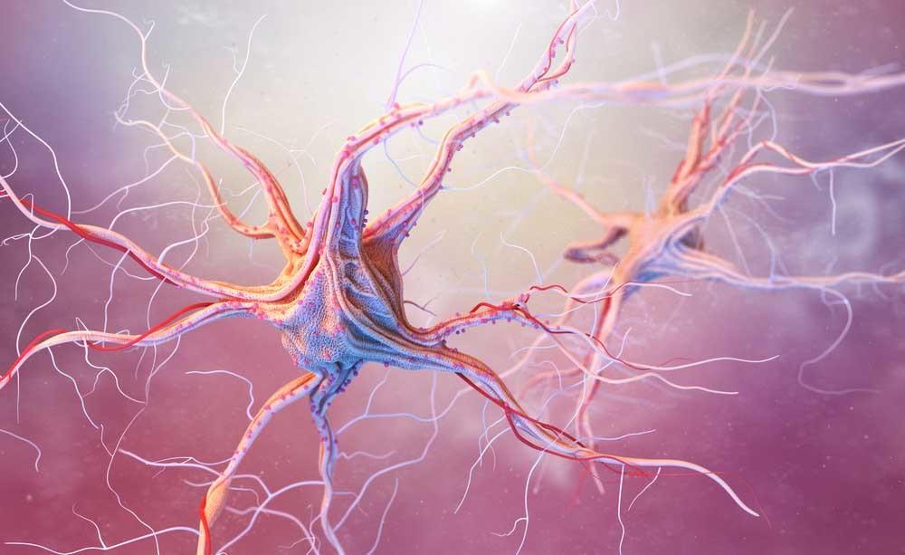 epilessia: i sintomi e le cure per questa malattia neurologica