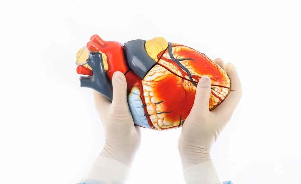 fibrillazione atriale: i rischi per il cuore