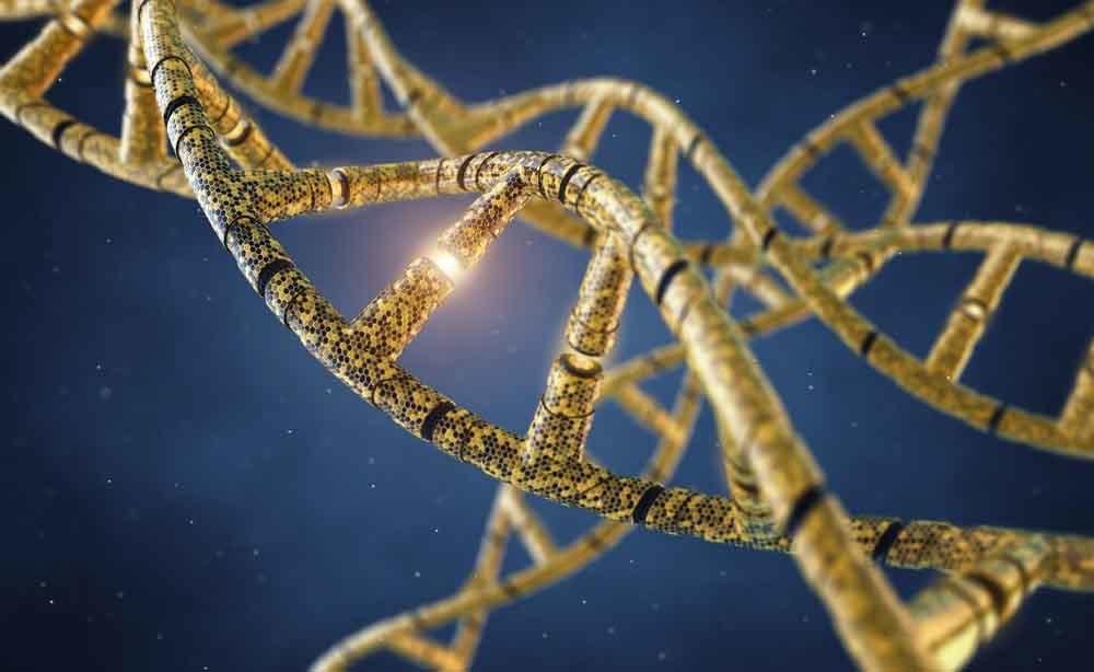 mutazione genetica: le curiosità del DNA