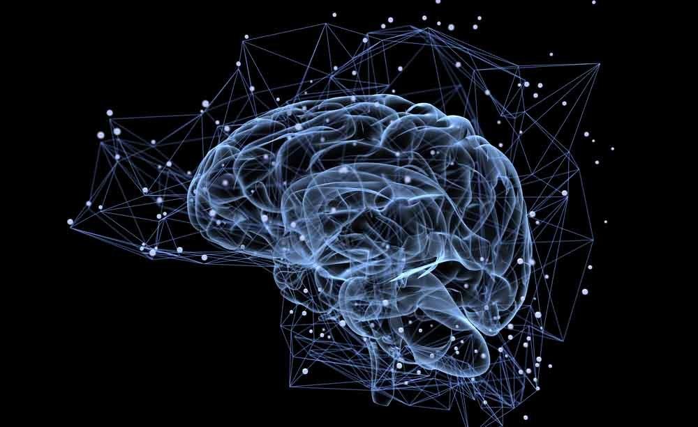 cervello: come allenarlo