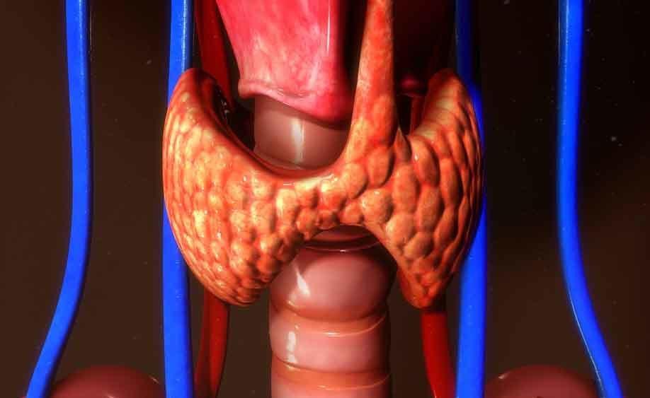 cancro alla tiroide: i trattamenti