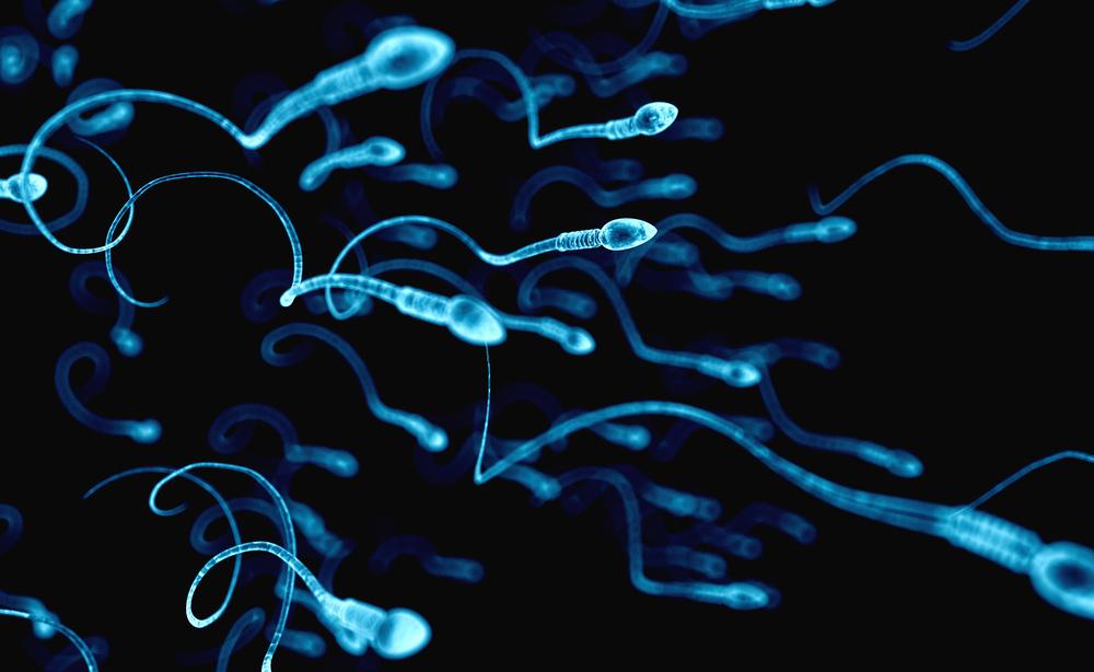 Infertilità maschile: le cause del disturbo
