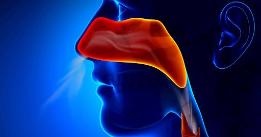 Mucosa del naso intasata e che, di conseguenza, espelle a fatica l'aria dalle narici