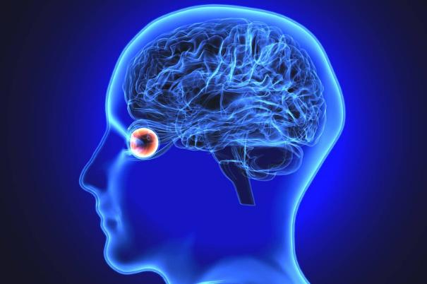 anatomia-occhio-su-sfondo-blu