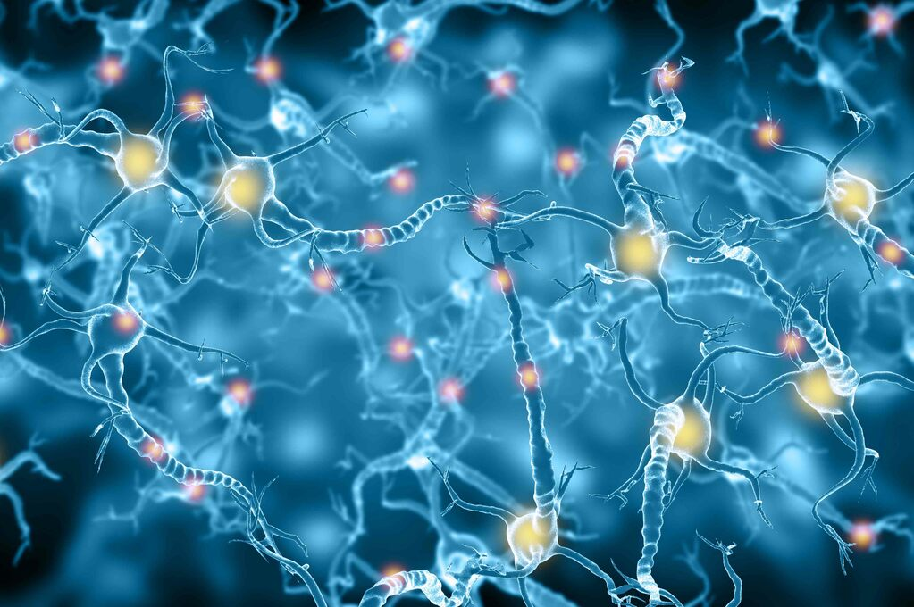 Cura per l'Alzheimer: il Sì al Primo Farmaco