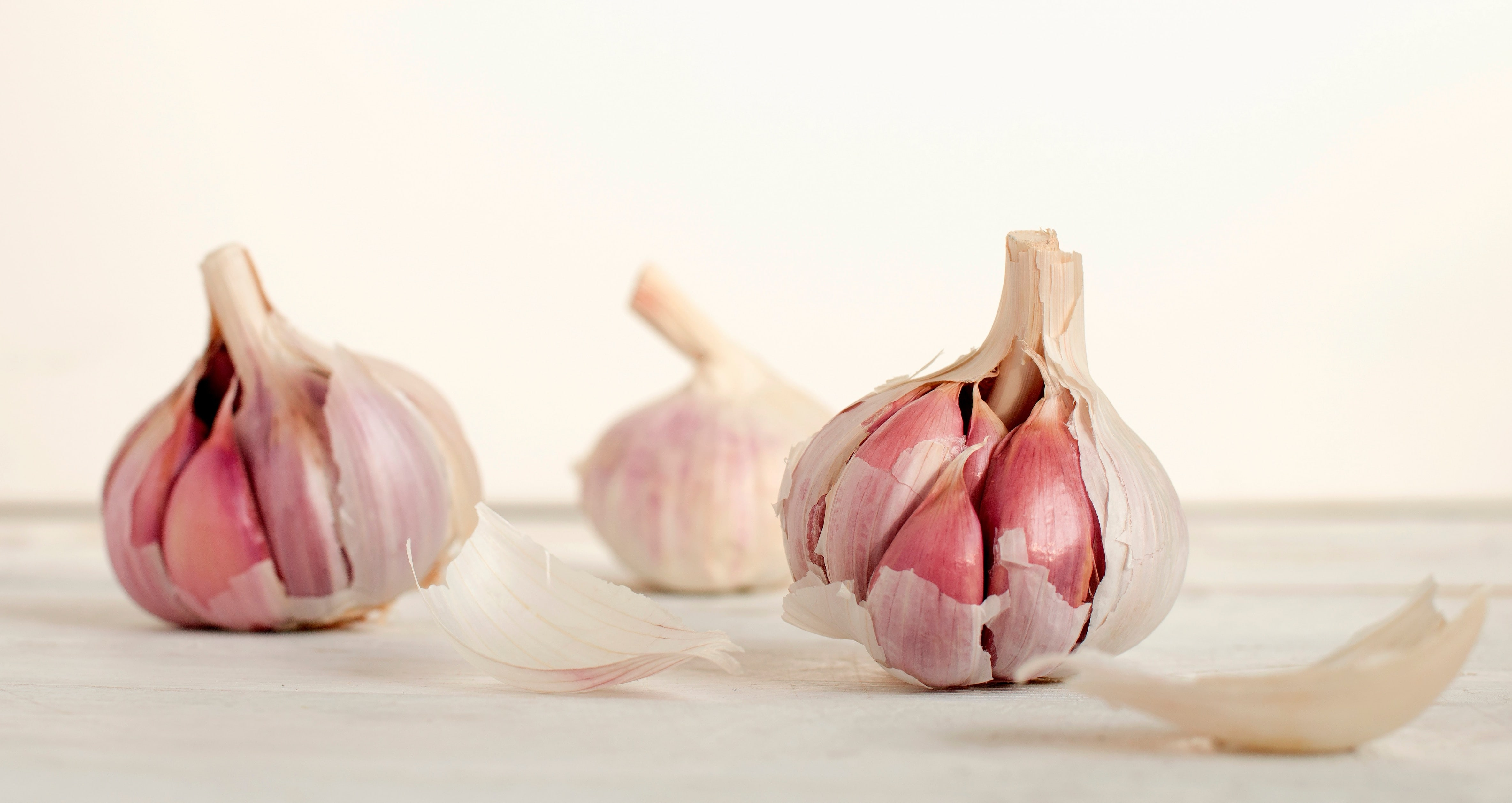 Garlic is your friend.