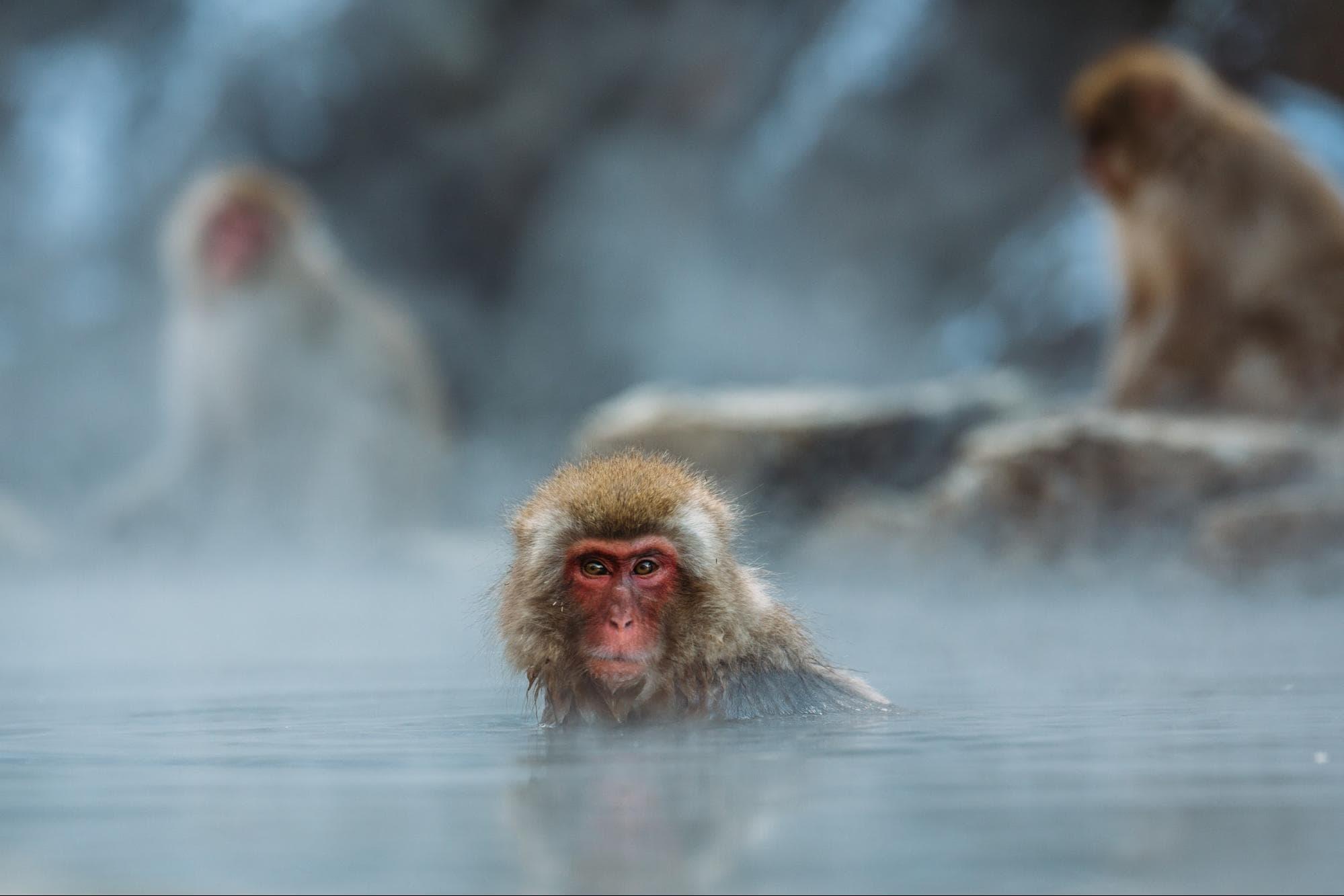 A steamy bath.
