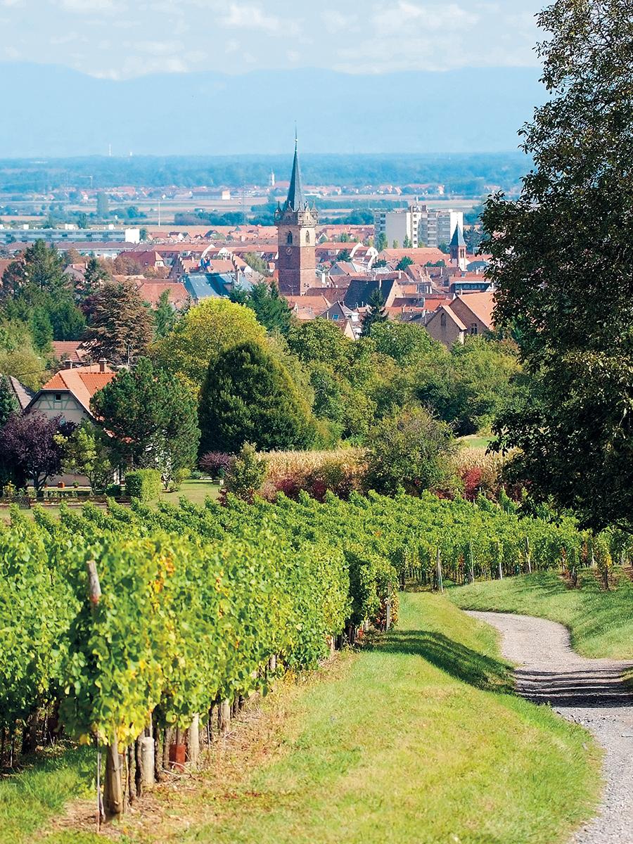 Village Vacances  Alsace