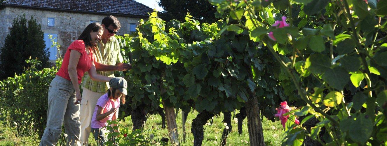 Locations Vacances En Bourgogne Avec Vvf Villages