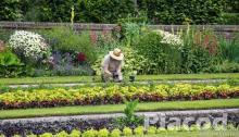 Területrendező, kertész, kertépítő NÉMET MUNKA -Kempten \ Allgäu