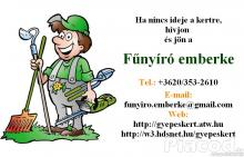 Fűnyírást, fűkaszálást, kertfenntartást vállalok! - Budapest XI. kerület