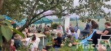 Fűszer- és gyógynövénykert