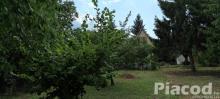 Eger Szépasszony-völgyben zártkert szőlő kisházzal