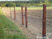 vadháló,drótfonat,kerítés építés,akác oszlop