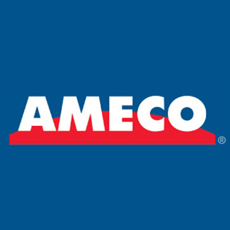 Large ameco log