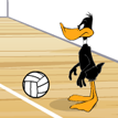 Daffy Volleyball