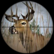Deer Hunter 2014 Online