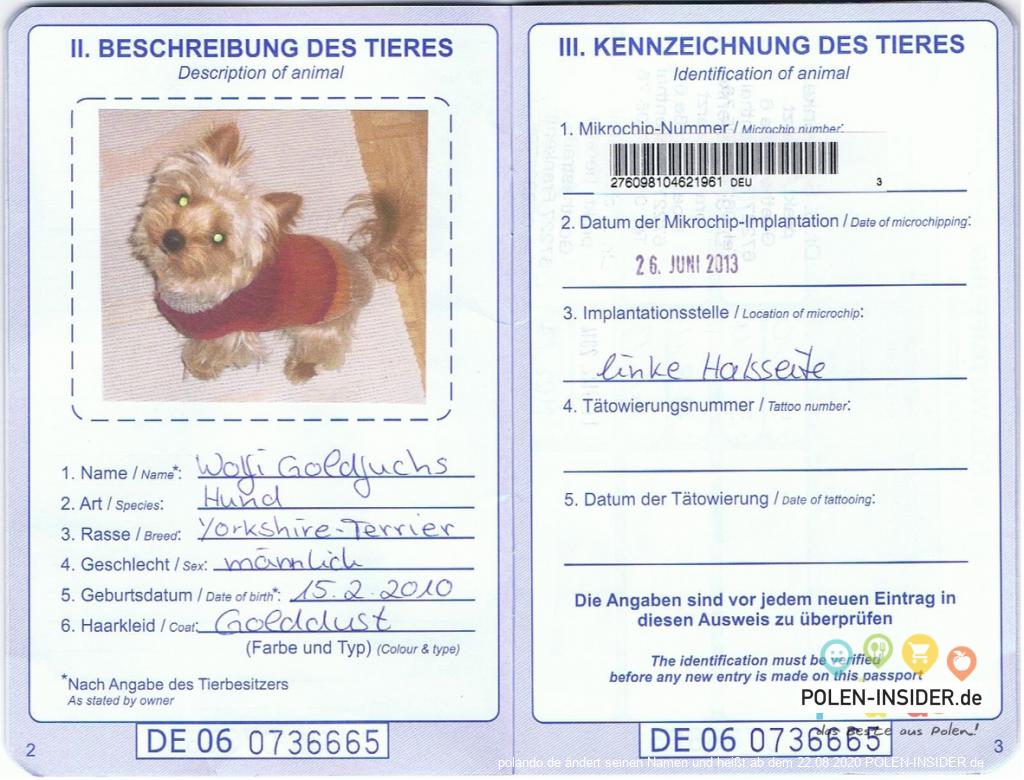 Ratgeber: mit dem Hund nach Polen