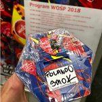 Das 26. Finale des WOŚP öffnet Herzen und bricht zum wiederholten male den Rekord