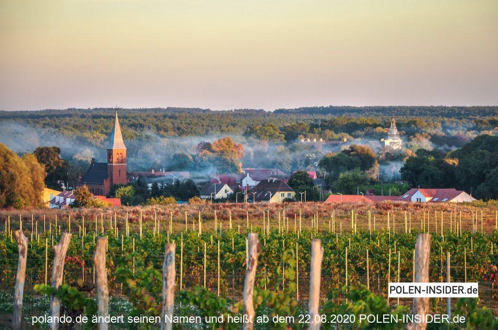 Mit Wein den Spätsommer in Polen genießen