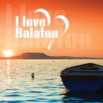 Balaton 1 design egyedi szublimált textil méteráruhoz