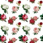 Színes rózsák design egyedi szublimált textil méteráruhoz