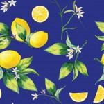 Leveles citrom kéken design egyedi szublimált textil méteráruhoz