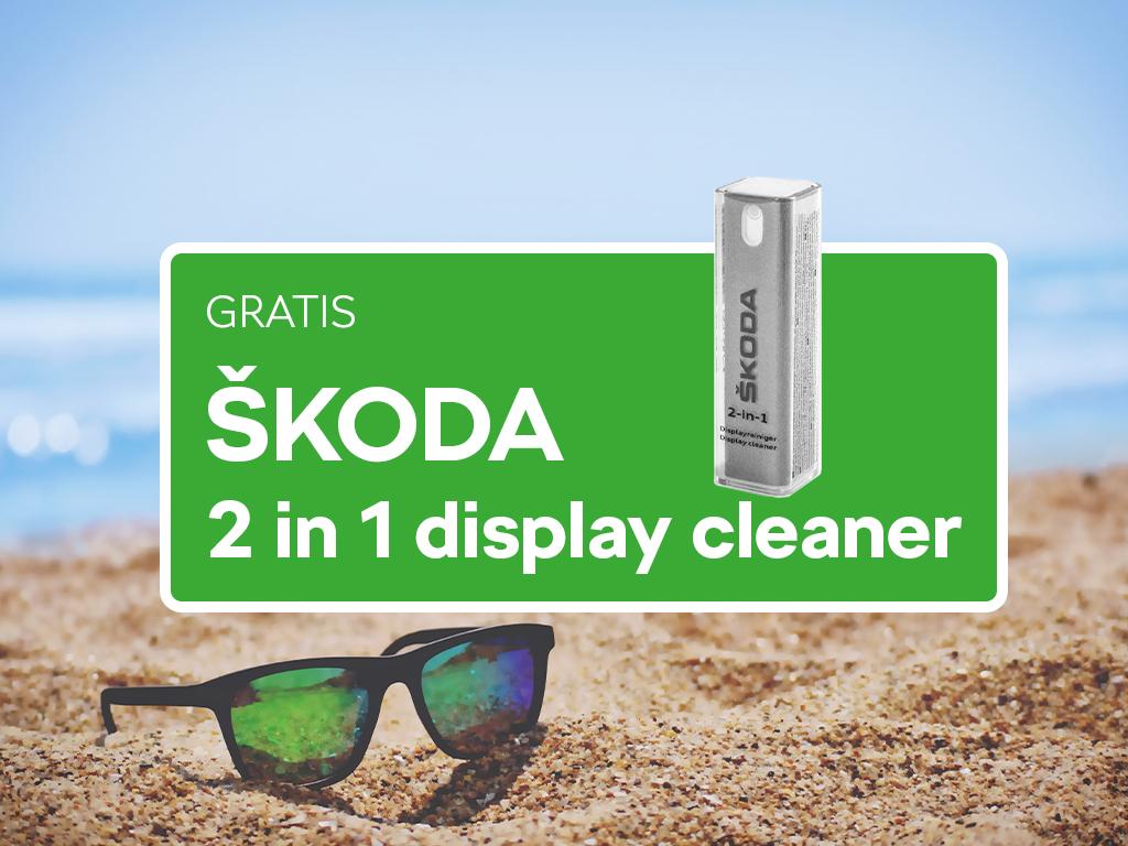 Gratis_display_cleaner_visual_1024x768.jpg